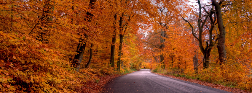 Free Fall Facebook Covers for Timeline, Pretty Autumn Season ...