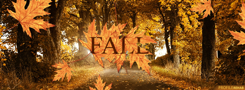 ... Fall Leaves Pictures for Facebook Cover - Autumn Facebook Cover