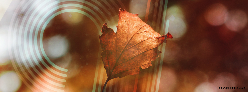 Autumn Leaves Image for Facebook Cover - October Event Day 16