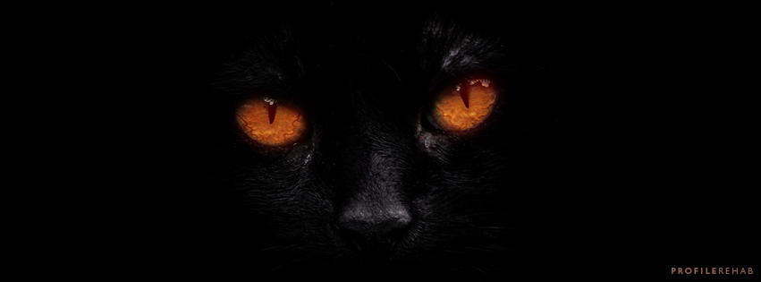 Black Cat Halloween Images for Facebook Covers - Halloween Black Cat Images -  October Event Day 21