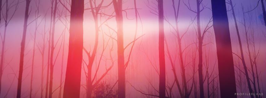 Creepy Forest Covers - Halloween Creepy Forest Images -  October Event Day 26