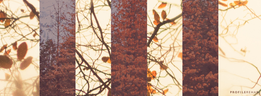 Autumn Leaves Cover Photo for Facebook Timeline - October Event Day 15